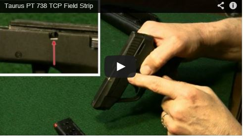 Taurus PT 738 TCP Field Strip